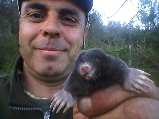 salvataggio animali selvatici